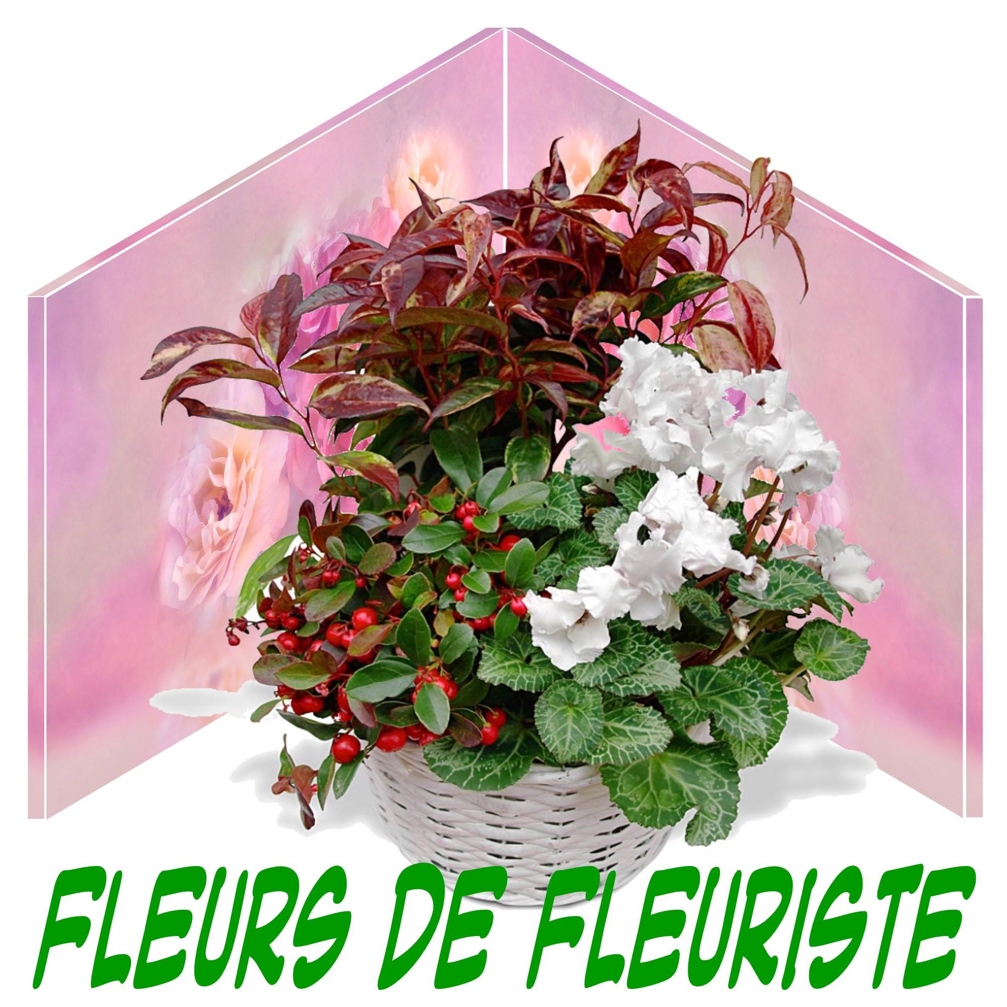 LIVRER DES FLEURS POUR UN ENTERREMENT A PARAY-LE-FRÉSIL 03