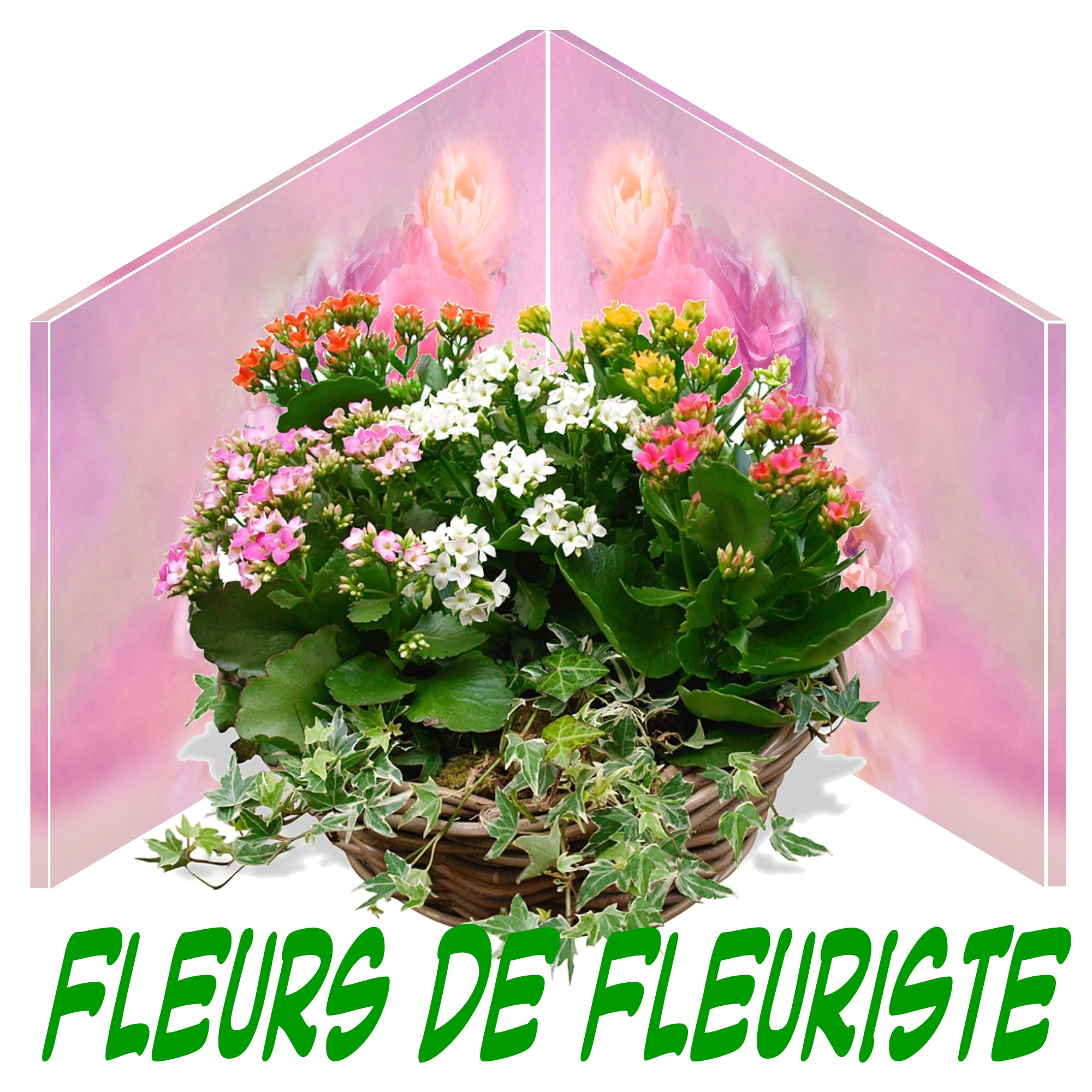PLANTES PLANTES VERTES ET FLEURIES