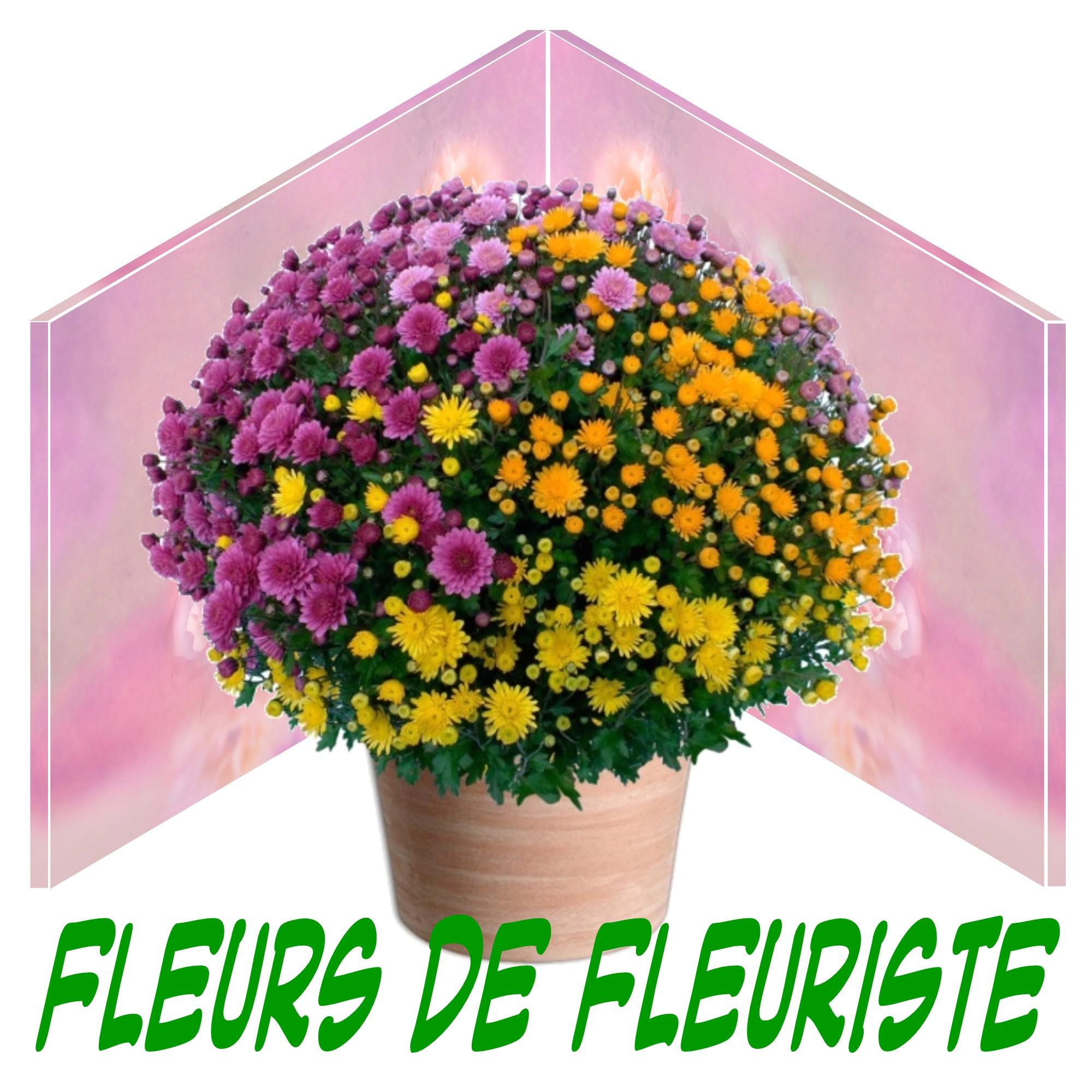 FLEURS TOUSSAINT Paris, FLEURS TOUSSAINT Marseille, FLEURS TOUSSAINT Lyon, FLEURS TOUSSAINT Toulouse, FLEURS TOUSSAINT Nice, FLEURS TOUSSAINT Nantes, FLEURS TOUSSAINT Montpellier, FLEURS TOUSSAINT Strasbourg, FLEURS TOUSSAINT Bordeaux, FLEURS TOUSSAINT Lille, FLEURS TOUSSAINT Rennes, FLEURS TOUSSAINT Reims, FLEURS TOUSSAINT Le Havre, FLEURS TOUSSAINT Saint-Étienne, FLEURS TOUSSAINT Toulon, FLEURS TOUSSAINT Grenoble, FLEURS TOUSSAINT Dijon, FLEURS TOUSSAINT Angers, FLEURS TOUSSAINT Nîmes, FLEURS TOUSSAINT Villeurbanne, FLEURS TOUSSAINT Le Mans, FLEURS TOUSSAINT Aix-en-Provence, FLEURS TOUSSAINT Clermont-Ferrand, FLEURS TOUSSAINT Brest, FLEURS TOUSSAINT Tours, FLEURS TOUSSAINT Limoges, FLEURS TOUSSAINT Amiens, FLEURS TOUSSAINT Annecy, FLEURS TOUSSAINT Perpignan, FLEURS TOUSSAINT Boulogne-Billancourt, FLEURS TOUSSAINT Metz, FLEURS TOUSSAINT Besançon, FLEURS TOUSSAINT Orléans, FLEURS TOUSSAINT Saint-Denis, FLEURS TOUSSAINT Argenteuil, FLEURS TOUSSAINT Mulhouse, FLEURS TOUSSAINT Rouen, FLEURS TOUSSAINT Montreuil, FLEURS TOUSSAINT Caen, FLEURS TOUSSAINT Nancy, FLEURS TOUSSAINT Tourcoing, FLEURS TOUSSAINT Roubaix, FLEURS TOUSSAINT Nanterre, FLEURS TOUSSAINT Vitry-sur-Seine, FLEURS TOUSSAINT Avignon, FLEURS TOUSSAINT Créteil, FLEURS TOUSSAINT Dunkerque, FLEURS TOUSSAINT Poitiers, FLEURS TOUSSAINT Asnières-sur-Seine, FLEURS TOUSSAINT Versailles, FLEURS TOUSSAINT Colombes, FLEURS TOUSSAINT Saint-Pierre, FLEURS TOUSSAINT Aubervilliers, FLEURS TOUSSAINT Aulnay-sous-Bois, FLEURS TOUSSAINT Courbevoie, FLEURS TOUSSAINT Fort-de-France, FLEURS TOUSSAINT Cherbourg-en-Cotentin17, FLEURS TOUSSAINT Rueil-Malmaison, FLEURS TOUSSAINT Pau, FLEURS TOUSSAINT Champigny-sur-Marne, FLEURS TOUSSAINT Le Tampon, FLEURS TOUSSAINT Béziers, FLEURS TOUSSAINT Calais, FLEURS TOUSSAINT La Rochelle, FLEURS TOUSSAINT Saint-Maur-des-Fossés, FLEURS TOUSSAINT Antibes, FLEURS TOUSSAINT Cannes, FLEURS TOUSSAINT Colmar, FLEURS TOUSSAINT Mérignac, FLEURS TOUSSAINT Saint-Nazaire, FLEURS TOUSSAINT Drancy, FLEURS TO